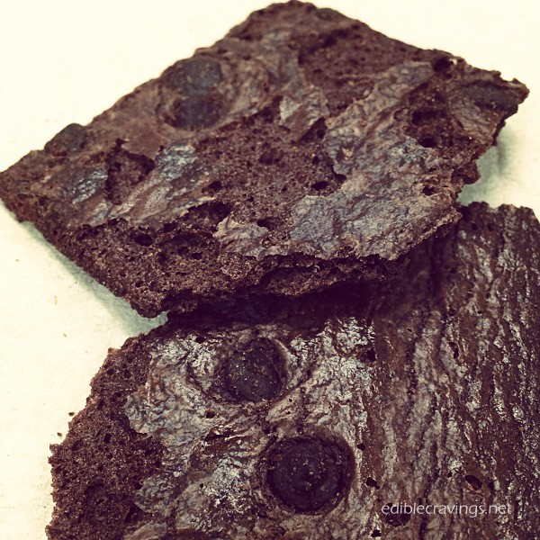 Sheila G's Brownie Brittle in Chocolate Chip